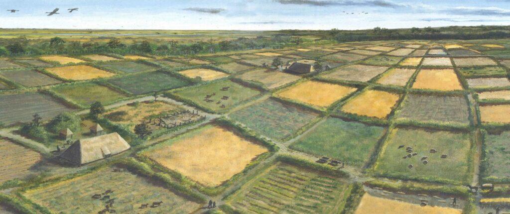 IJzertijdboeren maakten gebruik van raatakkers // Eisenzeitlichen Ackerflüren (c) Provincie Drenthe